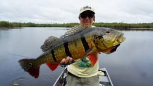 #amazonpeacockbass, #amazonpeacockbasstrip, #fishingtriptotheamazon,